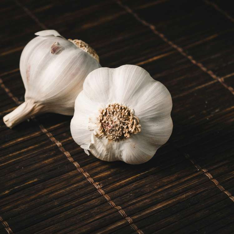 How eating garlic can sexually benefit Misters?