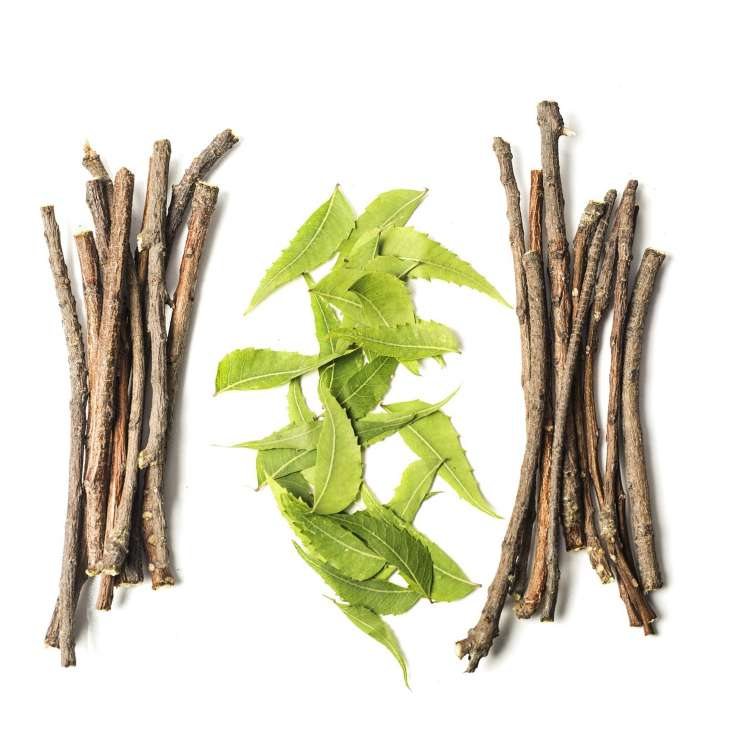 Can Ayurveda cure ED?