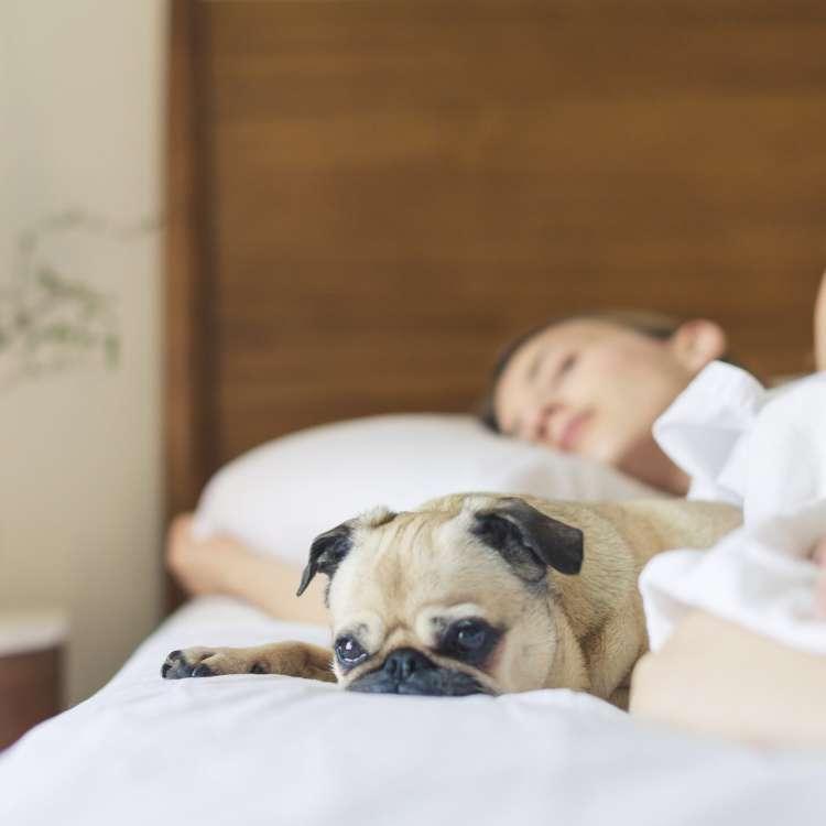 नींद की कमी से इरेक्टाइल डिस्फंक्शन हो सकता है!